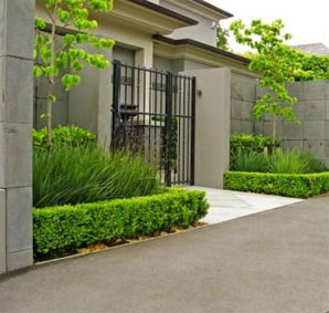 home landscaping Auckland